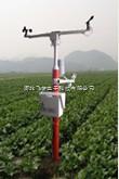 FM-WZQ固定式无线农业综合气象监测站
