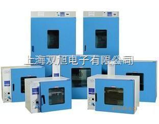 101-A-4電熱鼓風干燥箱101-A-4