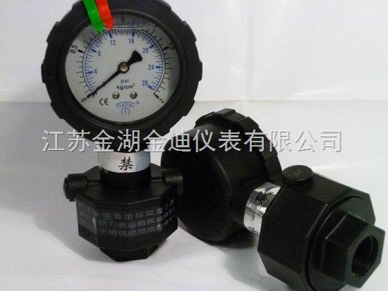 供應防腐全塑隔膜壓力表