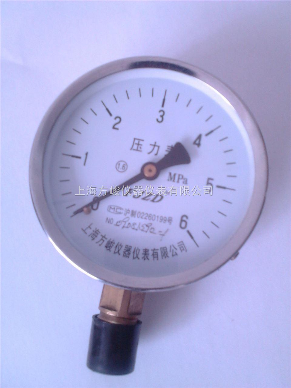 耐温压力表