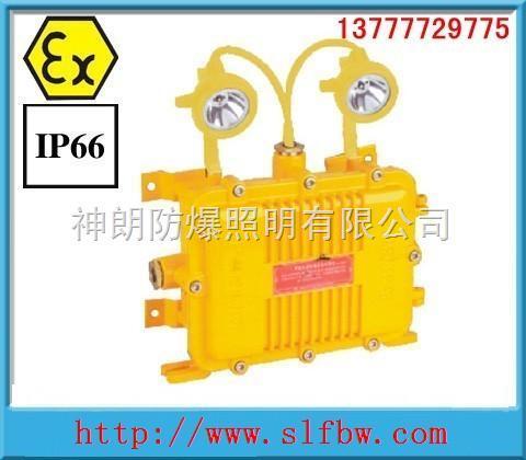 海洋王BXW6229,BXW6229价格,防爆应急工作灯厂家