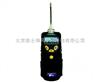 ppdRAE 3000 VOC检测仪