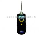 ppdRAE 3000 VOC檢測儀
