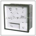 熱電阻溫度表 PT100型 TS6