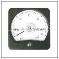 13D1-HZ 广角频率表