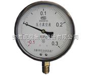 YNZ100耐震真空压力表