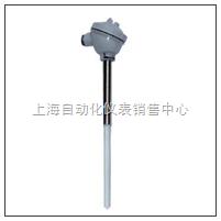 上海自动化仪表热电偶 WRR-120