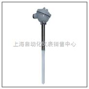 上海自动化热电偶WRR2-120