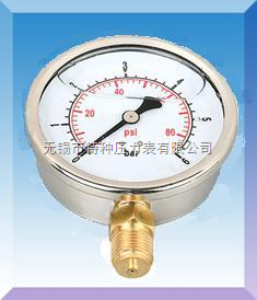 双刻度耐震压力表|多刻度压力表|双刻度压力表用途