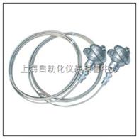 铠装薄膜铂热电阻 WZPK-133U WZPK2-133U