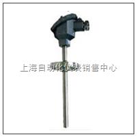 热电阻 WZP-430 WZP2-430