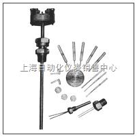 铂热电阻 WZP-013S WZP2-013S