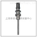 铠装薄膜铂热电阻 WZPK-565U WZPK2-565U