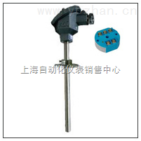 一体化温度变送器 SBWR-2180/331