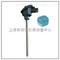 一体化温度变送器 SBWR-4480/131 SBWR-4480/130