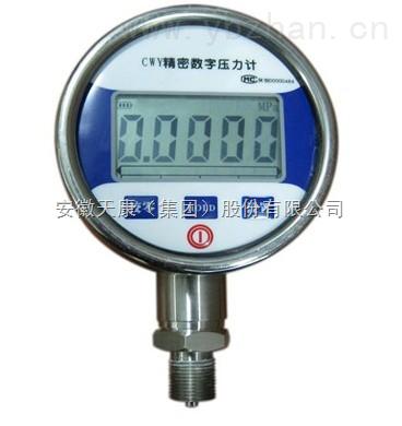 CWY-2B精密数字压力表