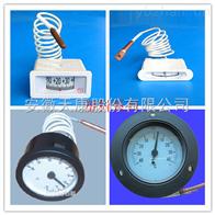 WTZ-280、WTQ-280压力式温度计