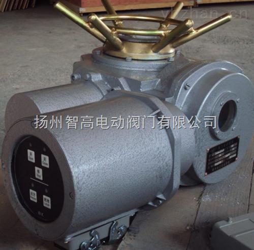 DZW180-18-A00-WK,DZW250-18-A00-WK整体型阀门电动执行机构