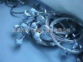双支铠装热电阻WZPK2-435 安徽天康