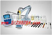 氯离子浓度计/氯离子浓度检测仪/氯离子检测仪.