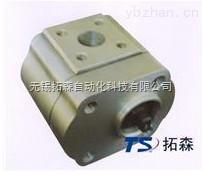 CB-E204系列双向齿轮泵