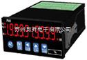 AXE MM2D微电脑型双显示幕控制电表