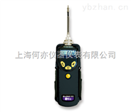 PGM-7340 ppb级RAE 3000 VOC检测仪