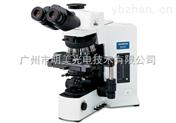 OLYMPUS BX51-P 奧林巴斯偏光顯微鏡