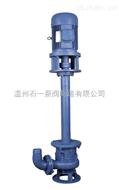 45KW大口径250 液下无堵塞大型排污泵 厂家直销 优质液下泵双管