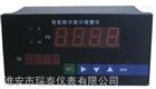 NHR-5100A-55-0/X/2/X/1P-A