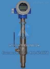 JY-LDE-插入式電磁流量計