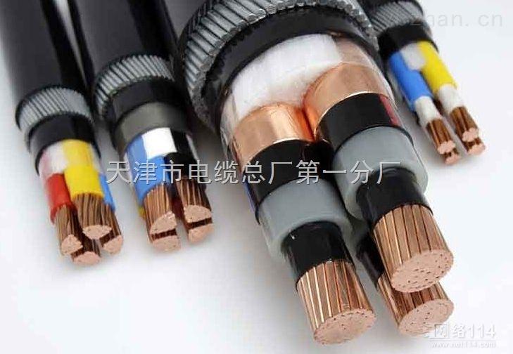 VV聚乙烯电力电缆