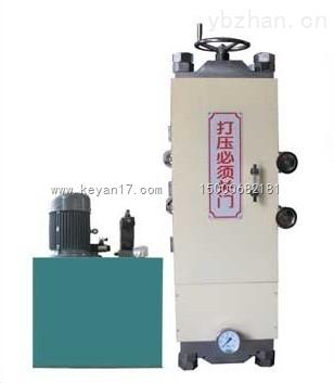 DJY30-30T電動等靜壓壓片機