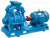 直联式真空泵,水环真空泵