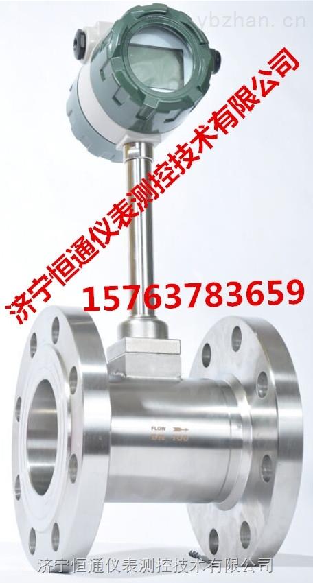 锅炉蒸汽流量计HTMC-VF0101/C24/T1P1/D3Z