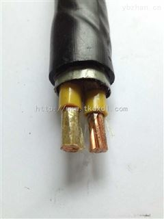 NH-VVNH-YJV-耐火电力电缆