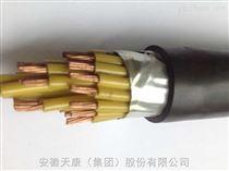 ZR-KVV450/750 61*1.5阻燃聚氯乙烯绝缘及护套控制电缆