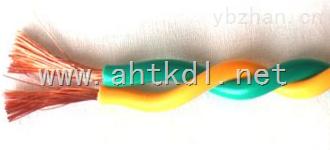 WDZN-RYJS-2*2.5清洁环保电缆
