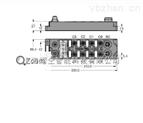 PROFIBUS-DP現場總線I/O模塊 圖爾克