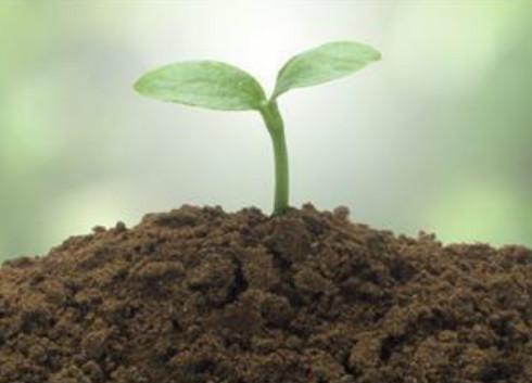 《北京市重点企业土壤环境监测技术指南》发布