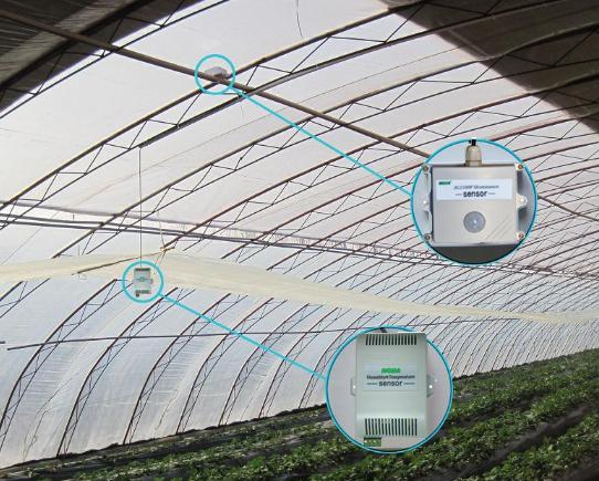 蔬菜大棚温湿度环境自控|温室大棚自动灌溉系统