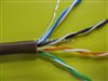 DJFP2F计算机电缆