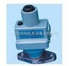 DP-100A压力继电器