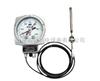 WTZK-03压力式温度控制器,WTZK-03TH压力式温度控制器