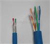 IA-DJYPVPR本安型计算机电缆
