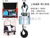 安吉电子吊秤/电子吊磅/3t电子吊秤价格