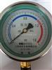 耐震压力表YTF-100H