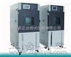 ZT-CTH-80L-S高温高湿箱