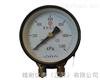 JN-YTSS双针压力表