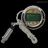 GT/P0102轴向分体数显压力表